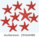 composition of starfishes | Shutterstock . vector #254164480