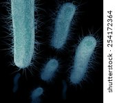 the superbug  known as... | Shutterstock . vector #254172364
