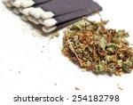 weed | Shutterstock . vector #254182798