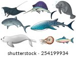 illustration of different kind... | Shutterstock .eps vector #254199934
