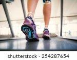 woman walking on the treadmill... | Shutterstock . vector #254287654