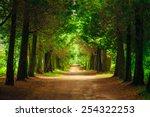 Walkway Lane Path With Green...