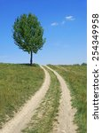 road past the lone tree in... | Shutterstock . vector #254349958