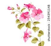 flower hibiscus tropical plant. ...   Shutterstock .eps vector #254391148