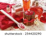 spa set  scented candle  sea... | Shutterstock . vector #254420290