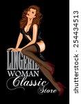 vector retro poster lingerie... | Shutterstock .eps vector #254434513