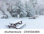 winter white snow. christmas...   Shutterstock . vector #254436484