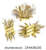 watercolor golden ribbons with... | Shutterstock .eps vector #254438230