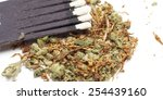 weed on white background  ... | Shutterstock . vector #254439160