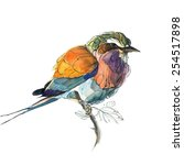 watercolor colorful bird | Shutterstock .eps vector #254517898