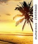 tropical beach sunrise  sunset  ... | Shutterstock . vector #254554660