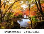 autumn park in japan | Shutterstock . vector #254639368