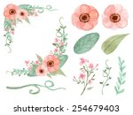 set of flowers and leaves...   Shutterstock .eps vector #254679403