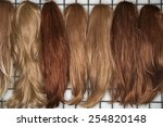 different colored wigs for... | Shutterstock . vector #254820148