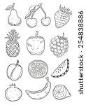 hand drawn fruits | Shutterstock .eps vector #254838886