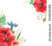 watercolor vintage card... | Shutterstock .eps vector #254843488