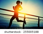 healthy lifestyle sports woman... | Shutterstock . vector #255005188