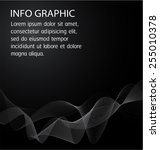 black light abstract technology ... | Shutterstock .eps vector #255010378