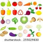 vegetable set   Shutterstock .eps vector #255029830