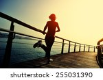 healthy lifestyle sports woman... | Shutterstock . vector #255031390