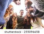 multiracial group of friends...   Shutterstock . vector #255096658