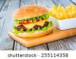 tasty and appetizing hamburger... | Shutterstock . vector #255114358