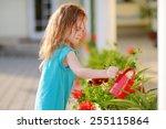 cute little girl watering... | Shutterstock . vector #255115864