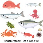 sea fishes | Shutterstock .eps vector #255136540