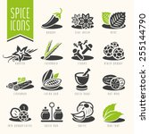 spice icon set | Shutterstock .eps vector #255144790