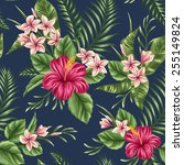 tropical floral seamless... | Shutterstock .eps vector #255149824