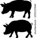 Pig Silhouette   Black Vector...