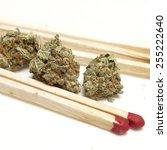 marijuana white background  | Shutterstock . vector #255222640