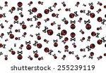 skull with bones pattern vector ... | Shutterstock .eps vector #255239119