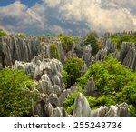 Stone Forest Shi Lin. National...