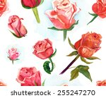 seamless watercolor roses... | Shutterstock . vector #255247270