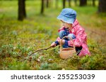 adorable girl picking... | Shutterstock . vector #255253039