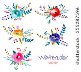 vector floral set. watercolor... | Shutterstock .eps vector #255287596
