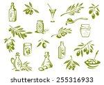 green olive design elements... | Shutterstock .eps vector #255316933
