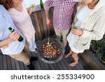 couples having a barbeque... | Shutterstock . vector #255334900