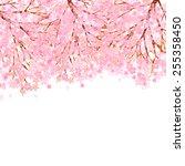 cherry blossom background | Shutterstock .eps vector #255358450