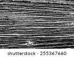 design element. vector wood... | Shutterstock .eps vector #255367660