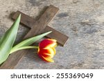 Spring Tulip And Cross Abstrac...