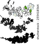 set of silhouettes of flowering ... | Shutterstock .eps vector #255418564