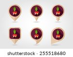 radish flat icon with long... | Shutterstock .eps vector #255518680