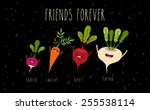 a set of cartoon vegetables...   Shutterstock .eps vector #255538114