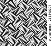 seamless black and white weave... | Shutterstock . vector #255540379