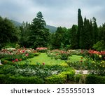 Stock photo rose garden 255555013