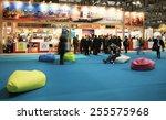 milano  italy   february 12 ... | Shutterstock . vector #255575968