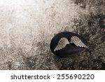 golden angel wings on a... | Shutterstock . vector #255690220