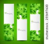 set banner ecology illustration ... | Shutterstock .eps vector #255697630